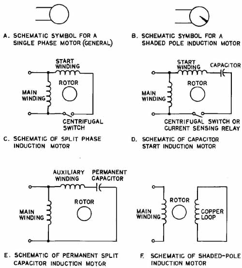 Split phase motor schematic split get free image about for Split phase ac motor