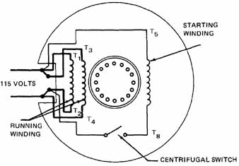 wiring diagram 120 volt motor wiring image wiring single phase induction motors on wiring diagram 120 volt motor